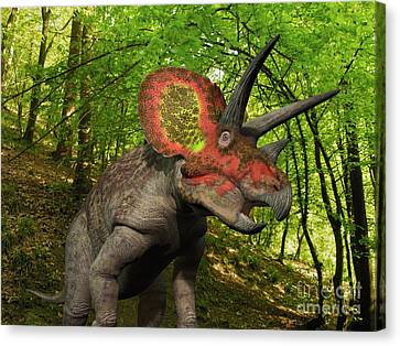 A Colorful Triceratops Wanders Canvas Print by Walter Myers