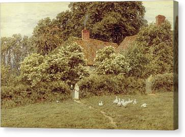 A Cottage At Farringford Isle Of Wight Canvas Print by Helen Allingham