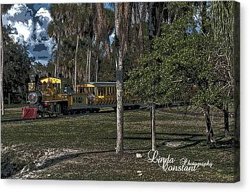 Canvas Print featuring the photograph A Day On The Sarengeti by Linda Constant