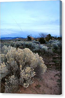 A Desert View After Sunset Canvas Print by Kathleen Grace