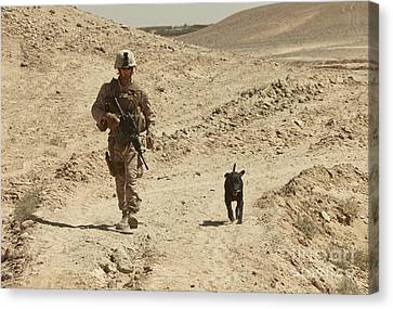 Working Dog Canvas Print - A Dog Handler Walks With An Explosives by Stocktrek Images