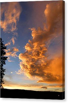 A Dramatic Summer Evening 1 Canvas Print by Will Borden
