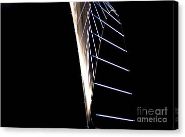 A Dropped Pin Canvas Print by Ted Kinsman