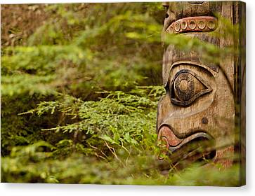 A Face In The Forest Canvas Print