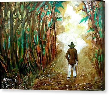 A Fall Walk In The Woods Canvas Print by Seth Weaver