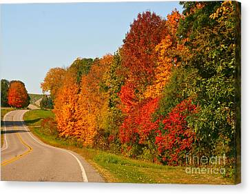 Canvas Print featuring the photograph A Fine Fall Day by Joan McArthur