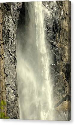 A Force Of Nature Canvas Print by Lynn Bauer