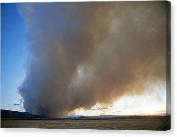 A Forest Fire Burns In The Gallatin Canvas Print by Gordon Wiltsie