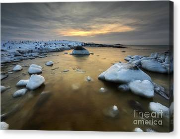 A Frozen, Rusty Bay On Andoya Island Canvas Print by Arild Heitmann