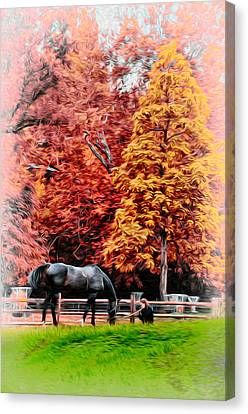 A Girl And Her Horse Canvas Print by Bill Cannon