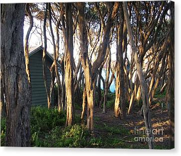 A Glimpse Of Paradise Canvas Print by Therese Alcorn