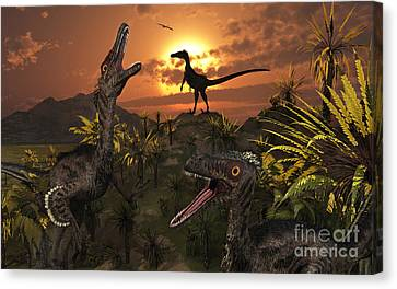 A Group Of Feathered Carnivorous Canvas Print by Mark Stevenson