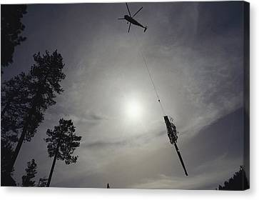 A Helicopter Lifts Cut Timber Canvas Print by Joel Sartore