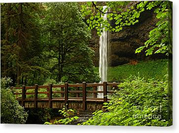 A Hidden Gem Canvas Print