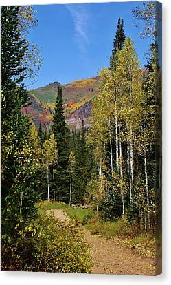 A Hike Through The Mountains Canvas Print by Bruce Bley