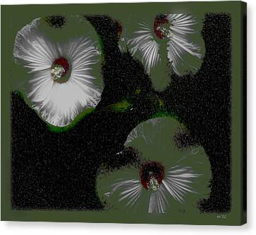 A Hint Of Hibiscus Canvas Print by Rene Crystal
