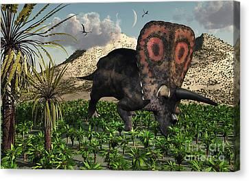A Lone Torosaurus Dinosaur Feeding Canvas Print by Mark Stevenson
