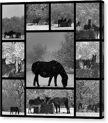 A Long Winter Canvas Print by Christy Leigh