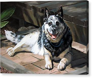 A Man's Best Friend Canvas Print by Sandra Chase