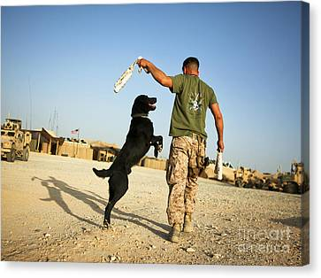 A Military Working Dog Handler Conducts Canvas Print by Stocktrek Images