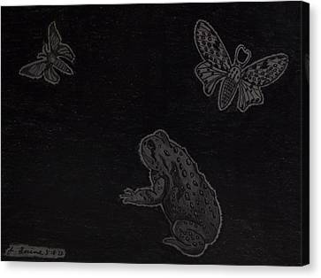 Canvas Print featuring the drawing A Moonless Summers Night by Gerald Strine