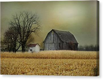 Canvas Print featuring the photograph A New Dawn by Mary Timman