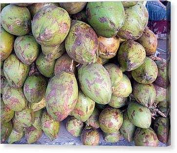 A Number Of Tender Raw Coconuts In A Pile Canvas Print by Ashish Agarwal