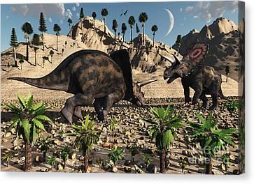 A Pair Of Torosaurus Dinosaurs Fight Canvas Print by Mark Stevenson