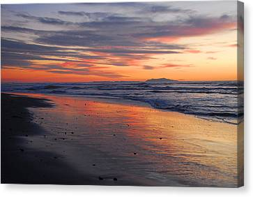 A Passion For Purple Canvas Print by Lynn Bauer