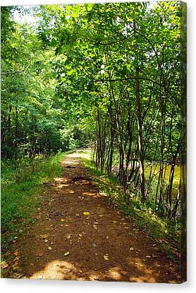 A Path Around The Pond Canvas Print by Robert Margetts