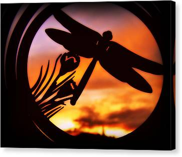 Canvas Print featuring the photograph A Peaceful Dragonfly Sunset by Cindy Wright