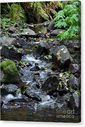 A Peaceful Stream Canvas Print by Chalet Roome-Rigdon