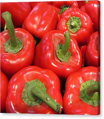 A Peck Of Red Peppers Canvas Print by Kathy Clark