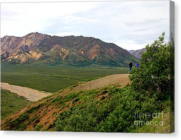 Canvas Print featuring the photograph A Photographer's Dream by Kathy  White