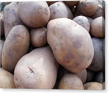 A Pile Of Large Lumpy Raw Potatoes Canvas Print by Ashish Agarwal
