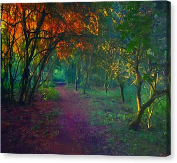 Canvas Print featuring the painting A Place Of Mystery by Joe Misrasi