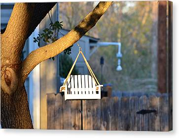 A Place To Perch Canvas Print by Nikki Marie Smith