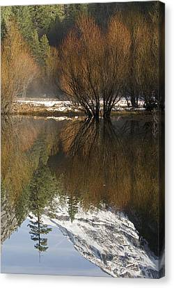 A Reflection Of Fall Trees In Mirror Canvas Print by Rich Reid