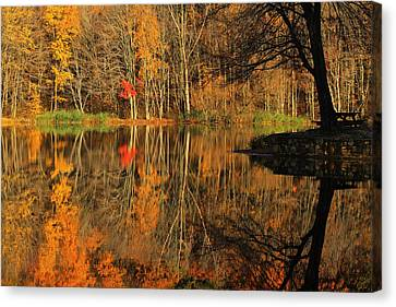 A Reflection Of October Canvas Print by Karol Livote