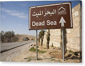 A Road Sign In Both Arabic And English Canvas Print by Taylor S. Kennedy