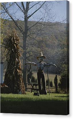 A Scarecrow Stands Guard Next To A Corn Photograph By