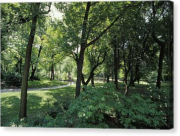 A Scenic And Shady Central Park Garden Canvas Print by Jason Edwards
