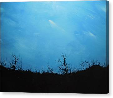 A Shooting Star In An Azure Sky Canvas Print by Dan Whittemore