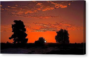 A Silent Sun Canvas Print by Viveka Singh