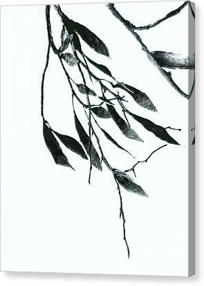 A Single Branch Canvas Print by Ann Powell