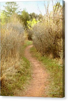 A Single Path Canvas Print by Cristophers Dream Artistry
