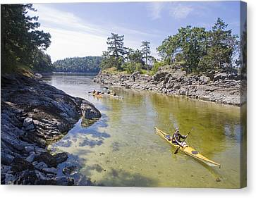 A Small Group Kayaks Canvas Print by Taylor S. Kennedy