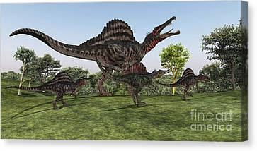 A Spinosaurus Mother Walks Canvas Print by Corey Ford