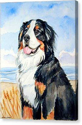 A Summer Day - Bernese Mountain Dog Canvas Print by Lyn Cook