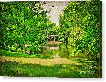 A Summer's Day Canvas Print by Darren Fisher